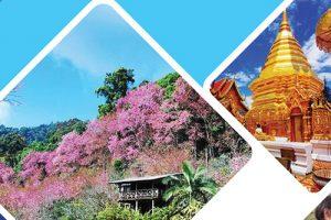 S9-ドイ・ステープ寺院と白モン族の村(クン・チャンキアン) 半日観光